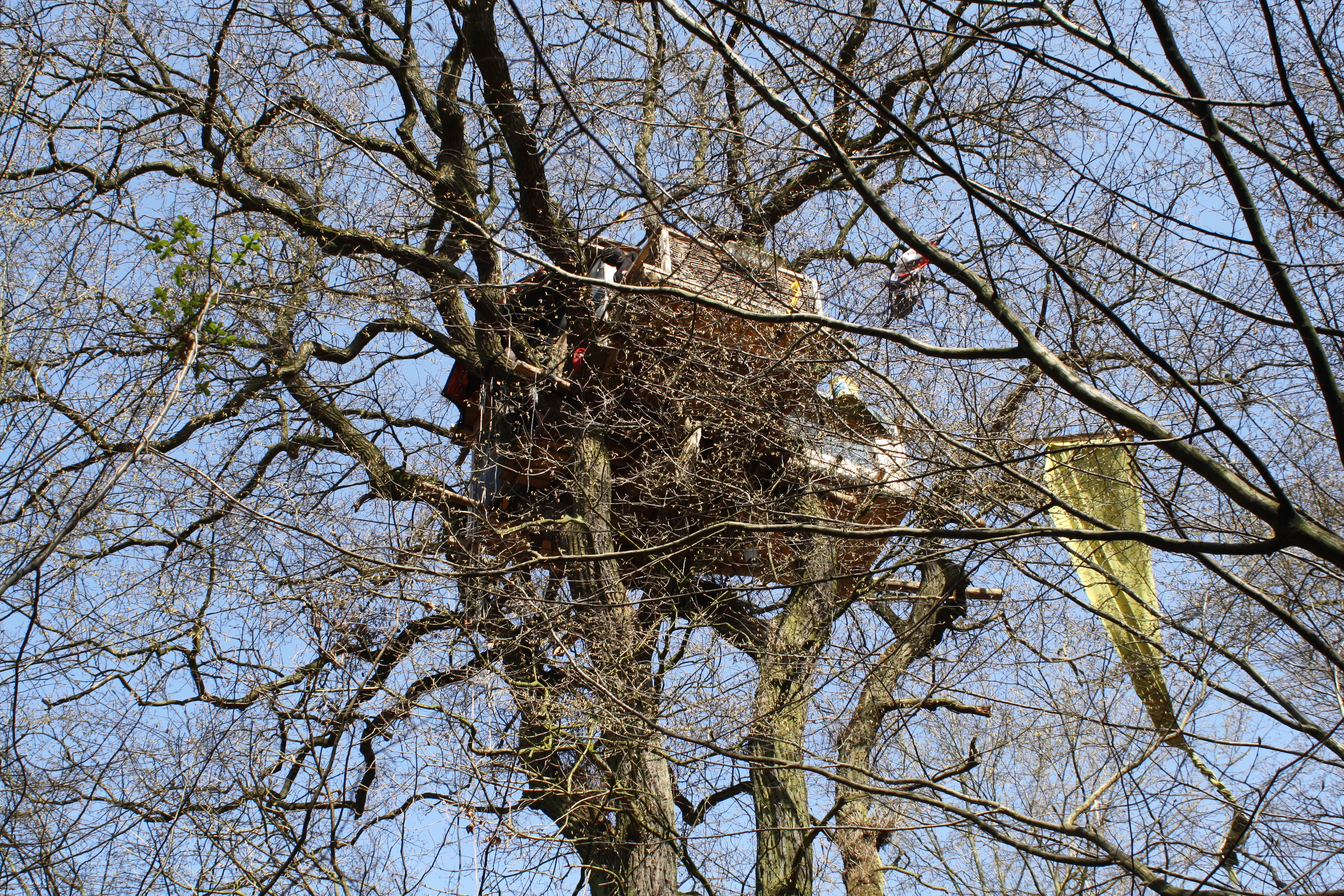 Todesfall Hambacher Forst